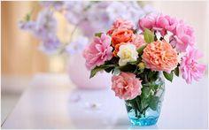 Beautiful Flowers In Vass HD Wallpaper | beautiful flowers in vass hd wallpaper 1080p, beautiful flowers in vass hd wallpaper desktop, beautiful flowers in vass hd wallpaper hd, beautiful flowers in vass hd wallpaper iphone