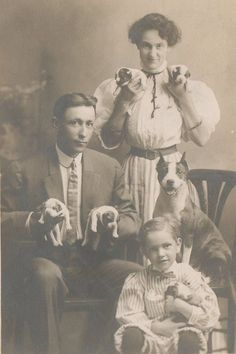 Proud mama with assistants holding her 5 pup litter / 1915 colección C. Antique Photos, Vintage Pictures, Vintage Photographs, Old Pictures, Nanny Dog, American, Old Dogs, Photo Postcards, Animales