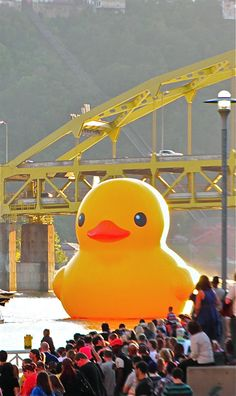 Giant Rubber Duck by  Dutch artist Florentijn Hoffman floating in Pittsburgh's Three Rivers