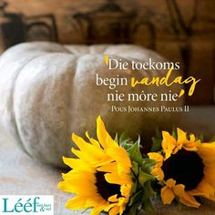 Afrikaans Quotes, Hart, Positive Quotes, Daisies, Sunflowers, Blessings, Qoutes, Inspiration, Relationship