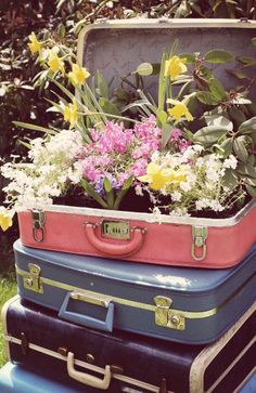 20 Great Ideas for Creative Gardening Using Containers You Never Thought of