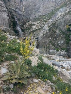 Aras Şelalesi