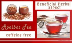 Rooibos Tea brings soothing comfort to your evening and is quite healthy to drink. Rooibos is widely known to be loaded with antioxidants, aspalathin and nothofagin and contains a phenolic compounds, including flavones, flavanols, and dihydrochalcones.
