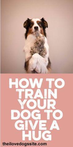 How To Train Your #Dog To Give A Hug! :) #DogTraining