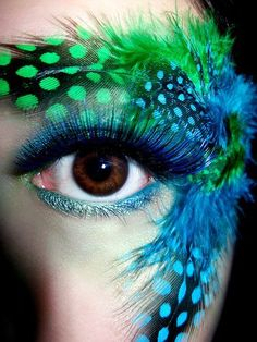 eye makeup related to exotic birds