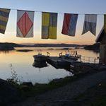 """44 Likes, 1 Comments - Følg Risøya (@risoya2016) on Instagram: """"Alle hyttene på Risøya er ledige i hele mai måned. Spesielt gunstig pris i mai, og pakkepris med…"""""""