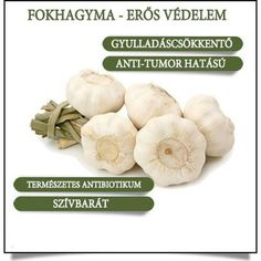One of the unique health properties contained in garlic is the sulfur compound known as allicin, a main ingredient with excellent antibiotic, antiviral and antifungal activities. Garlic Health Benefits, Vegetable Benefits, Go Health, Health And Wellness, Health Tips, Eating Vegetables, Food Is Fuel, Healthy Alternatives, Sons