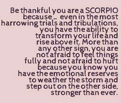 Scorpio Zodiac october November t shirt born t-shirt women men ab Astrology Scorpio, Scorpio Zodiac Facts, Scorpio Traits, Scorpio Girl, Scorpio Love, Scorpio Horoscope, Scorpio Quotes, Scorpio Anger, Scorpio Personality