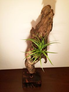 Statue of plants by HolzDinge on Etsy Statue, Trending Outfits, Unique Jewelry, Handmade Gifts, Plants, Etsy, Vintage, Kid Craft Gifts, Craft Gifts
