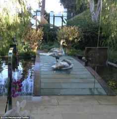 Lisa Vanderpump's front entrance...with swans...talk about over the top!