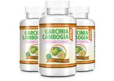 high protein diet to lose weight plan