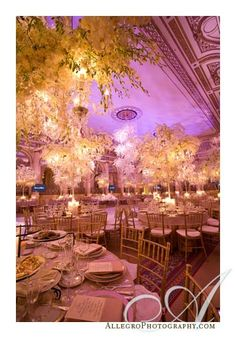 David Tutera knows his stuff, how whimsical!