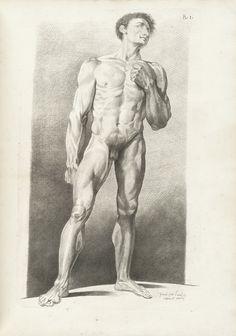 Gamelin, Jacques (1738-1803). Nouveau receuil d'ostéologie et de myologie.