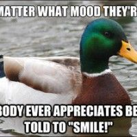 "Internet memes can be hilarious and/or terribly stupid, but rarely are they actually helpful. The ""actual advice mallard"" is useful and surprising!"
