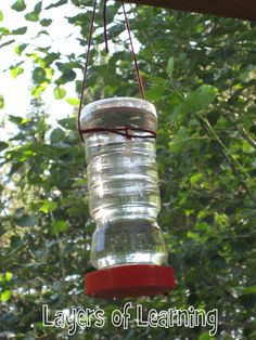 Homemade hummingbird feeder - Super easy. Only takes a few materials