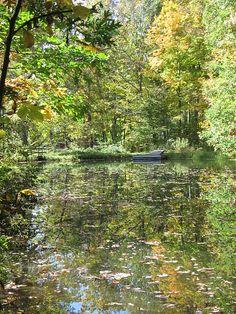 Fall Reflections <3