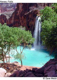 White water raft the Grand Canyon and visit Havasu Falls