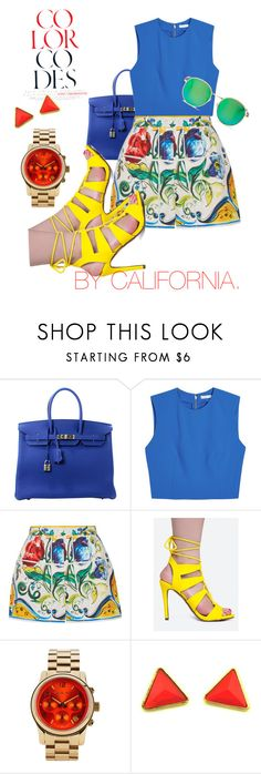 """""""Color Codes  ( B U R A N O   )"""" by by-california ❤ liked on Polyvore featuring Hermès, Alice + Olivia, Dolce&Gabbana, Delicious, Michael Kors, Wildfox, men's fashion and menswear"""