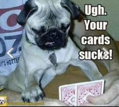 Your cards suck!