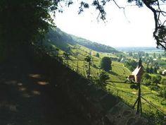 Spaziergang auf der Weinbergmauer, 2 Minuten von der Ferienwohnung entfernt
