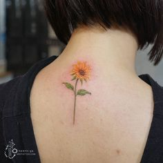 변함없이 한 곳만 바라보는 해바라기 한송이... 너와 나 이렇게 서로만 바라보고 살자:) A sunflower look at sun as…