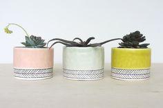 des cache pots en céramique, elizabeth benotti