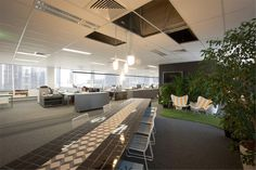 Red Design Group, Melbourne Office - creates distinct areas in open plan with lighting and flooring