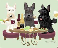 Scottish Terrier Dog's WINEing
