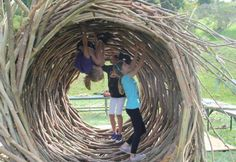Spirit Nests by Jayson Fann Playground Design, Backyard Playground, Children Playground, Outdoor Learning, Outdoor Activities, Outdoor Play Spaces, Sensory Garden, Outdoor Classroom, Outdoor Projects