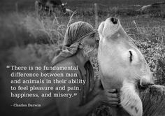 """There is no fundamental difference between man and animals in their ability to feel pleasure and pain, happiness, and misery.""   ~Charles Darwin"