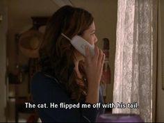 haha, Lorelei...  Gilmore Girls #cat