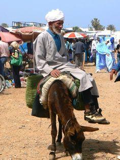 Burro, meio de transporte (Marrocos)
