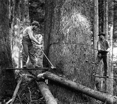 historic images | Historic Logging Images