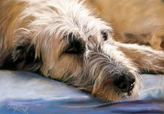 Angela Franke (pastel painting)