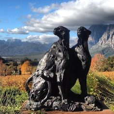 Dylan Lewis Cheetahs at Delaire Graff Wine Estate - Stellenbosch - South Africa. Wine Vineyards, Cheetahs, February 2015, Cape Town, South Africa, Contemporary Art, Sculptures, Art Gallery, Honey