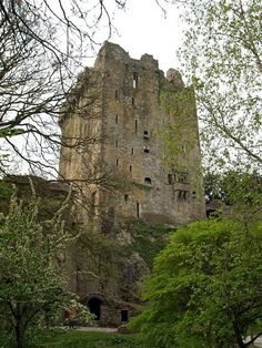 I loved Blarney Stone Castle! And yes I kissed the Blarney Stone! :) gift of gab for sure! Places Around The World, Travel Around The World, Around The Worlds, Beautiful Castles, Beautiful Places, Dream Vacations, Vacation Spots, Monuments, Places To Travel