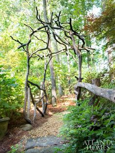"rustic arbor made of ""squiggly"" mountain laurel wood and reinforced with local locust wood. Rustic Arbor, Wooden Arbor, Landscaping Tips, Garden Landscaping, Storybook Gardens, Landscape Design, Garden Design, Professional Landscaping, Garden In The Woods"
