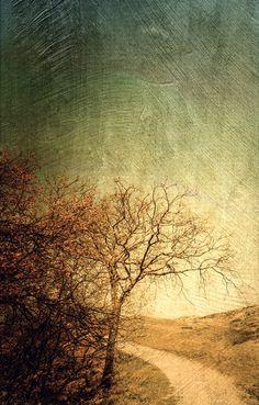 'dünenlandschaft' von Vera Kämpfe bei artflakes.com als Poster oder Kunstdruck $20.79