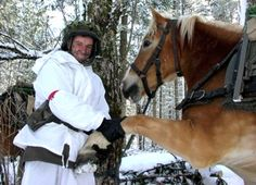Draft Horses, Austria, Animals, Horse, Soldiers, Weapons, People, Animales, Animaux