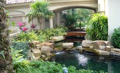 south florida landscaping - Google Search