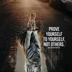 20 Motivational Quotes Brought To You By Big And Powerful Cats - I Can Has Cheezburger? 20 Motivational Quotes Brought To You By Big And Powerful Cats - World's largest collection of cat memes and other animals Strong Quotes, Positive Quotes, Motivational Quotes, Inspirational Quotes, Powerful Quotes, Motivational Pictures, Tiger Quotes, Lion Quotes, Reality Quotes