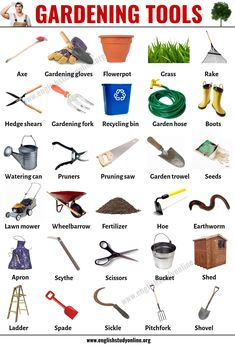 Gardening Tools: List of 30 Useful Tools Names for Gardening - English Study Onl. - Gardening Tools: List of 30 Useful Tools Names for Gardening – English Study Online Imágenes efec - English Vocabulary Words, Learn English Words, English Phrases, English Study, English Lessons, English Grammar, Learning English For Kids, English Language Learning, Teaching English