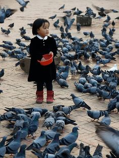 Some good-looking pigeons there in Kathmandu. But big flocks of them scare me. Travel Tour and Trek Nepal We Are The World, People Around The World, Nepal, Beautiful World, Beautiful People, Amor Animal, Portraits, Beautiful Children, Pigeon