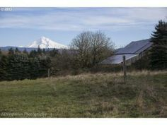 We share land with James near Mt. Hood with a beautiful view and plenty of space. This land is for our families.