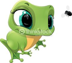 beautiful frog that looks at a fly on a white background