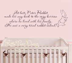 Peter Rabbit Wall Decal - Nursery Wall Decal - Baby Room Wall Decal - Peter Rabbit