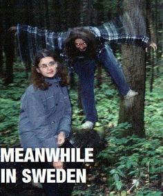 Meanwhile, in Sweden...