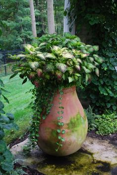 gorgeous planter