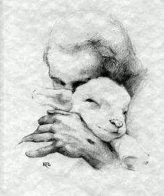 .A Shepherd's love