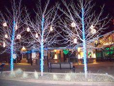 Holiday Lights in Colorado Springs   Colorado Springs Living